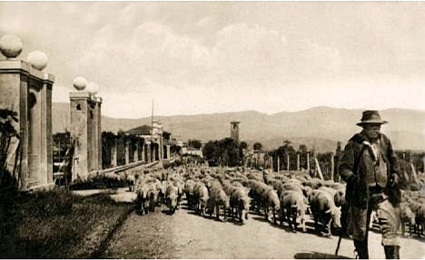 Amatrice 1924, back from Campagna Romana